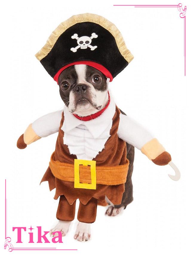 tika ティカ コスプレ 衣装 costume ペット 海賊 可愛い